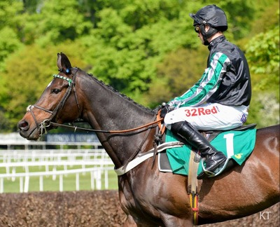 Altior Horse
